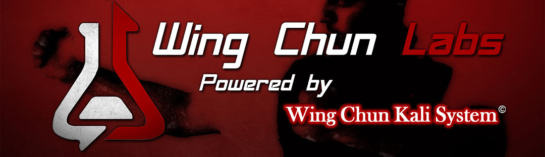 Wing Chun Labs Online Training - Charlie Diaz