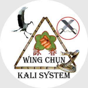 Site icon for Wing Chun Kali System Houston Texas